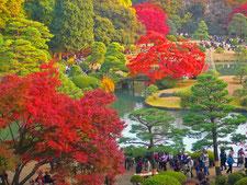 Korakuen Park and Kagurazaka