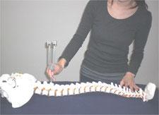 日本音叉ヒーリング研究会onsalaboがOMチューナーで背骨の調整