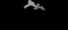 Das Lederbandl_Kooperation_Hund_Hundeartikel_outdoor_Blogger