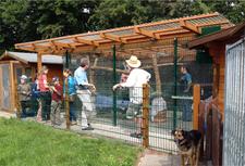 Tierheim Lindern Besuch am Katzen Freigehege