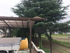 ポリカ屋根の張り替え:工事前写真