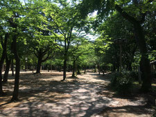 この公園は本当に癒されます