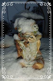 立花雪 制作