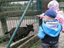 Ausflug in den Tierpark