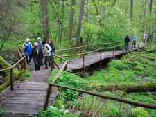 Wandertouren - durch Polen auf Schusters Rappen - Masuren und die Hohe Tatra mit Krakau zu Fuß entdecken