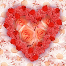 """Flower heart"" by Bartosz Szamborski - Bartosz Szamborski. Licensed under CC-BY-SA 3.0 via Wikimedia commons. Original  ""http://commons.wikimedia.org/wiki/File:Flower_heart.jpg#/media/File:Flower_heart.jpg"""
