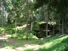 i boschi attorno al ru