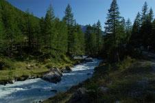 il torrente accanto alla mulattiera