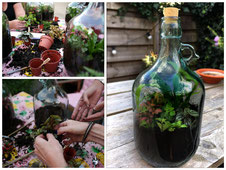Workshop flessentuin mini eco systeem in pot