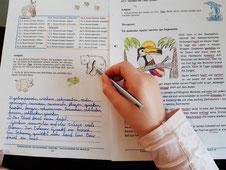 Online Nachhilfe, Online Nachhilfelehrer, Online-Nachhilfelehrer, Nachhilfe in Grasberg, Nachhilfe Deutsch, Rechtschreibkurs