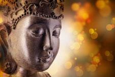 Yoga und Siddhazentrum Zeitenwandel