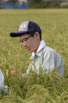 「JAさがみ」の職員さん。丈の長い神力の田んぼに入ると、胸下くらいまでスッポリと隠れてしまう! 栽培する池上さん以外の農家さんも、改めてこの長さには驚いていた。