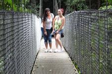 Arenal Combo: Puentes Colgantes & Aguas Termales