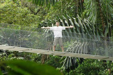 Arenal Combo: Hanging Bridges & La Fortuna Waterfall.