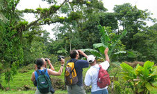 Arenal Hanging bridges and Arenal Volcano National Park Hike