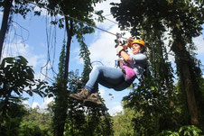 Zip Lining - Canopy Tour