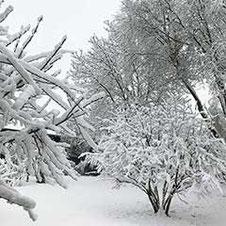 Schlafen im Winter – Schneelandschaft
