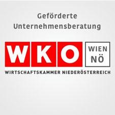 Geförderte Unternehmensberatung der WKO Wien & Niederösterreich für Unternehmen KMU Jungunternehmer