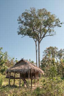Bokeo - Provinz im Nordwesten Laos