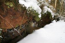 Aus dem Moor austretendes Wasser gefriert am Grabenrand zu Eiszapfen, Foto: Sabine Tappertzhofen
