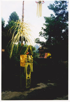 Ein Penjor (Opferpfahl aus Bambus) der mit Blumen, Früchten, kleinen Reiskuchen und weiteren geschmückt ist und den Ahnen und Geistern während des Galungan-Festes dargebracht wird. Bali, Indonesien.