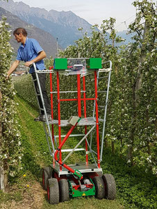 The easy to lift for Apple and wine-growing