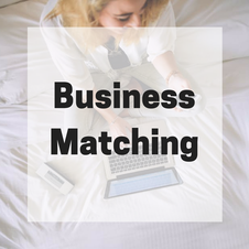 Business Matching