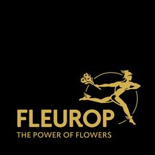 Blumen mit Fleurop versenden Olten