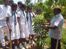 コーディネーターから苗木の植え方についてレクチャーを受ける子どもたち