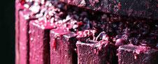 szőlő prés