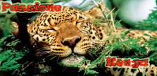 Passione Kenya