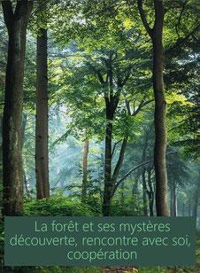 Stage «  La forêt et ses mystères » Découverte, rencontre avec soi, coopération avec la nature  Sylvie Hetzel touraine - annuaire des therapeutes via energetica