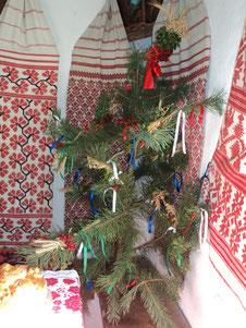 Весільне деревце, горіла, сосна,