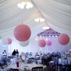 globos gigantes carpas