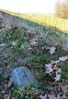 """Einer der wahrscheinlich letzten Gemarkungssteine in Lotzdorf - am """"Blinddarm""""; gefunden März 2016"""