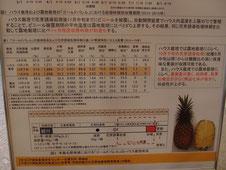 沖縄県農業研究センター 調べ
