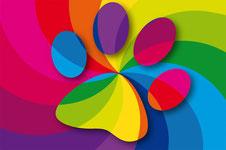 Farbe, Tiere, Farblichttherapie, Farblichtbehandlung, Lichttherapie