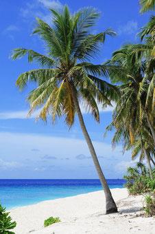 Malediven Urlaub buchen Pauschalreisen