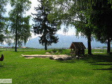 Natur im Park mit Bäumen & Spielplatz - Natur für mehr Gesundheit und Wohlbefinden - Foto by Danina's Kunst Werkstatt