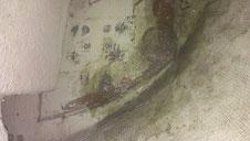 Le tableau renforcis avec de la fibre de verre fraichement appliquée.