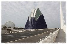El puente conocido como Puente de Serrería durante su construcción, y ahora Pont de l´Assut de l´Or, es un proyecto de Santiago Calatrava