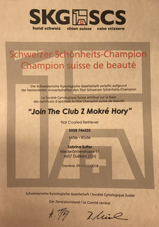 Schweizer Schönheits-Champion