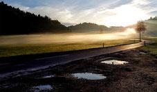 Morgenstimmung  (Foto: Hans Weiss)