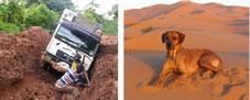 Lebenstraum Weltreise:  Kurz-Trailer durch Afrika