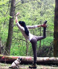 Baum-Yoga Privatstunden & Kleingruppen