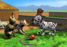 Screen My Pet School 3D