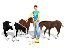 Artwork Best Friends – My Horse 3D