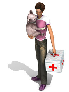 Artwork Outback Pet Rescue 3D