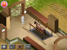 Screen Horse Vet 3D