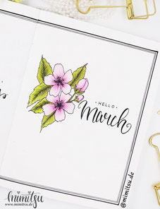 Bullet Journal, Bujo, kirschblüte malen einfach, Anleitung, How to draw a cherry blossom, Step by step tutorial flower, Monthlyspread, Futue log,